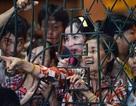 Livestream, cười cợt gây hỗn loạn trong đám tang: Tàn nhẫn và thiếu văn hóa?