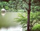 Du lịch sinh thái kết hợp nông nghiệp sạch – nghỉ dưỡng ven đô nâng tầm mới
