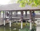 """Cầu ngói trăm năm tuổi được xem như """"báu vật"""" ở Ninh Bình"""