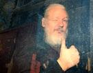 """7 năm ròng """"tá túc"""" trong Đại sứ quán Ecuador tại Anh của ông chủ WikiLeaks"""