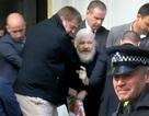 """Chiến dịch 36 giờ """"nghẹt thở"""" bắt giữ ông chủ WikiLeaks"""