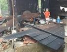 """Lốc xoáy """"quét qua"""", 49 ngôi nhà tốc mái, nhiều diện tích cây trồng hư hại"""