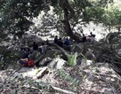 """Giải cứu 2 thanh niên bị ong """"tập kích"""" trên đỉnh núi Bà Đen, nguy kịch"""
