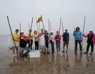 Một ngày làm ngư dân ở đảo Quan Lạn: Một mẻ lưới thu cả chục kg cá