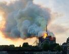Hai tỷ phú hàng hiệu Pháp hỗ trợ 460 triệu USD khôi phục Nhà thờ Đức Bà Paris