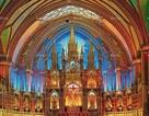 Vẻ đẹp tráng lệ của Nhà thờ Đức Bà Paris trước khi bị nhấn chìm trong biển lửa