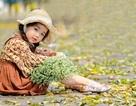 Bé gái Hà Nội thỏa sức tạo dáng trên con đường ngập lá sấu vàng Phan Đình Phùng