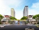 Vì sao đất nền Phú Mỹ - Bà Rịa Vũng Tàu ngày càng hấp dẫn các nhà đầu tư?