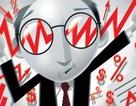 """Cổ phiếu """"hạt tiêu"""" tăng gần 250% trong 2 tuần, các kênh đầu tư """"nóng"""" cũng… chào thua!"""