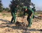 Quảng Bình: Hơn 500 chiến sĩ, đoàn viên thanh niên chung tay làm sạch bờ biển