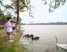 Chơi với thiên nhiên – món quà kỳ diệu dịp nghỉ lễ năm nay dành cho các bé