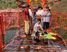 """Cận cảnh cây cầu kính trong suốt """"độc nhất, vô nhị"""" đầu tiên tại Việt Nam"""