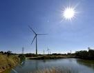 Khánh thành 2 nhà máy điện gió, điện mặt trời quy mô lớn tại Ninh Thuận