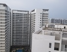 HoREA: Doanh nghiệp bất động sản còn nhiều vướng mắc về thủ tục hành chính
