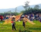 Tấp nập mang nơm, vó, lưới đổ về lễ hội đánh bắt cá có một không hai ở miền Trung