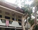 Mưa đá, lốc xoáy gây thiệt hại nặng cho nhà dân và trường học