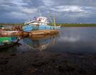 Cảng cá vừa nạo vét đã bị bồi lấp trở lại, ngư dân khóc ròng