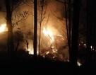 Phát hiện 1 người tử vong trong đám cháy rừng