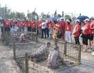"""Hơn 8.000 lượt khách đến tham quan """"địa ngục trần gian"""" ở Phú Quốc"""