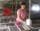 Người đàn bà dựng cơ đồ với ...ngàn con thỏ