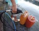 """Phú Yên: Phát hiện một điểm chuyên bán dầu diezen """"lậu"""" trong khu dân cư"""