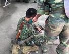 Xe quân đội lật ngửa, hàng chục binh sĩ bị thương