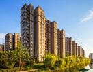 Ngày càng nhiều phụ nữ độc thân Trung Quốc mạnh tay mua nhà ở quận 1,2 đắt đỏ