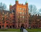 Du học sinh Việt Nam chia sẻ kinh nghiệm chinh phục trường Ivy League