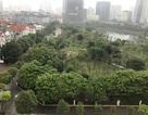 Lấy 14.500 m2 đất công viên Cầu Giấy làm bãi xe: Có thật 60% người dân đồng ý?