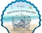 Hoa hậu Đại dương 2019 tiếp tục khởi động khi chưa được cấp phép?