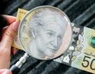 Hy hữu: Úc in xong 46 triệu tờ tiền mặt mới biết bị sai chính tả