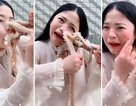 Gái xinh quay clip ăn bạch tuộc sống câu người xem và cái kết đắng
