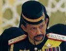 Sở hữu 500 siêu xe Rolls-Royce, Quốc vương Brunei sống xa hoa như thế nào?