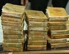 Vận chuyển 20 bánh heroin từ Hòa Bình về Hải Phòng, 2 đối tượng bị bắt