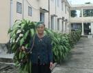 Bí quyết giữ mái tóc dài gần 4m của cụ bà 94 tuổi