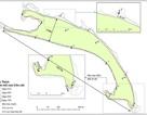 Diễn biến của đảo cát nổi giữa biển Hội An qua 5 lần quan trắc