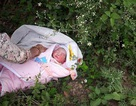 Bé gái 2 ngày tuổi bị bỏ rơi trong rừng