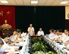 Đoàn Tiểu ban Văn kiện Đại hội XIII làm việc với Bộ Ngoại giao