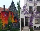 """Khi những ngôi nhà bình thường bỗng hóa """"tiên cảnh"""" nhờ cây xanh"""