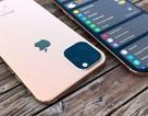 Chùm ảnh cho thấy thiết kế hoàn chỉnh và mới mẻ của bộ 3 iPhone 2019