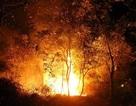 Cháy rừng, nhiều nhà dân sơ tán, hàng trăm người dập lửa trong đêm
