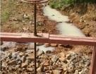 Đà Nẵng phạt công ty xả thải gây ô nhiễm môi trường 180 triệu đồng