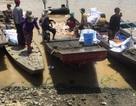 Cá nuôi trên sông La Ngà chết trắng sau trận mưa lớn