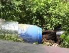 Những tình tiết gây sốc trong vụ 2 người bị sát hại, đổ bê tông phi tang