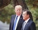 """Đàm phán Triều Tiên bế tắc, ông Trump """"thân chinh"""" tới Hàn Quốc"""