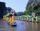 Mãn nhãn sắc vàng Tam Cốc trong tuần lễ du lịch Ninh Bình