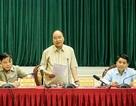 Thủ tướng kiểm tra tình hình dịch tả lợn châu Phi tại Hà Nội