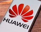 Huawei sẽ ra mắt nền tảng di động mới để thay thế Android trong năm nay