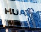 Cư dân mạng Trung Quốc kêu gọi tẩy chay iPhone để ủng hộ Huawei