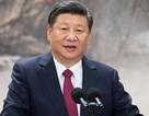 Lời kêu gọi của ông Tập Cận Bình sau lệnh cấm của Mỹ với Huawei